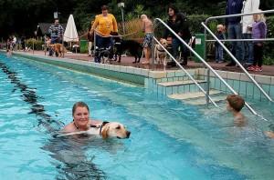Hundeschwimmen_i_Freibad_11_klein